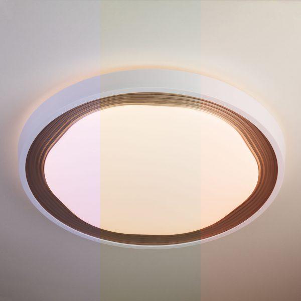 Накладной светодиодный светильник 40006/1 LED кофе 3