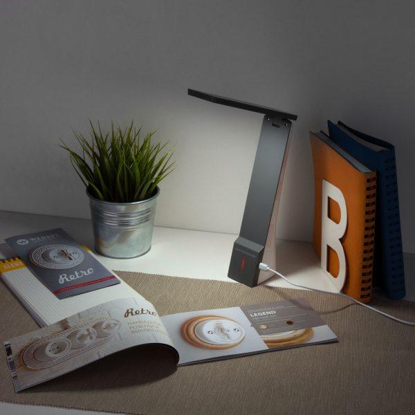 Настольный светодиодный светильник Desk белый/серый TL90450 1