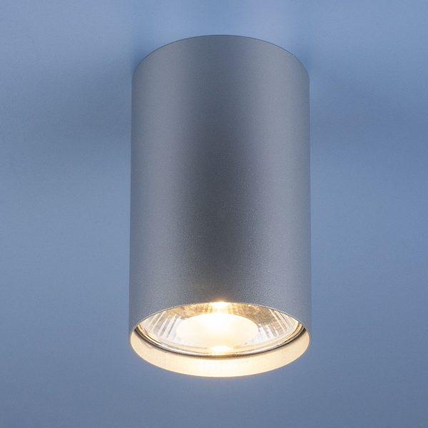 Накладной точечный светильник 6877 SL серебро Nowodvorski