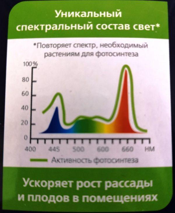 Спектральный состав света фитолампы и фитосветильника