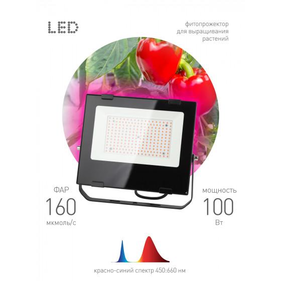 ЭРА Прожектор красно-синего спектра FITO-100W-RB-LED 3
