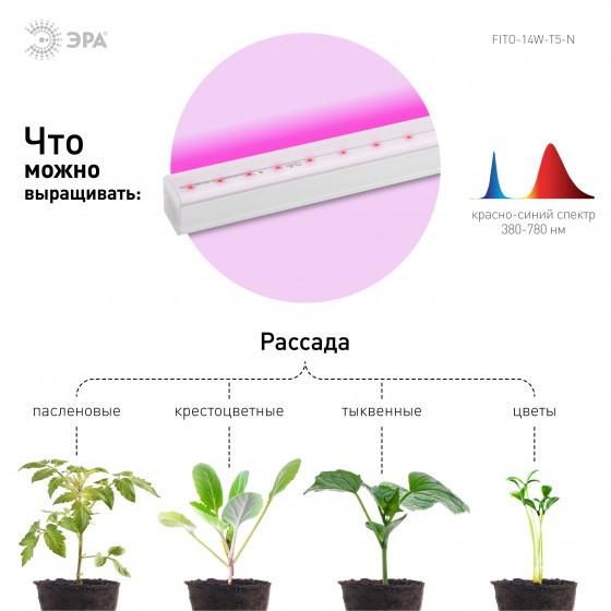 ЭРА Линейный светильник красно-синего спектра FITO-14W-Т5-N 4