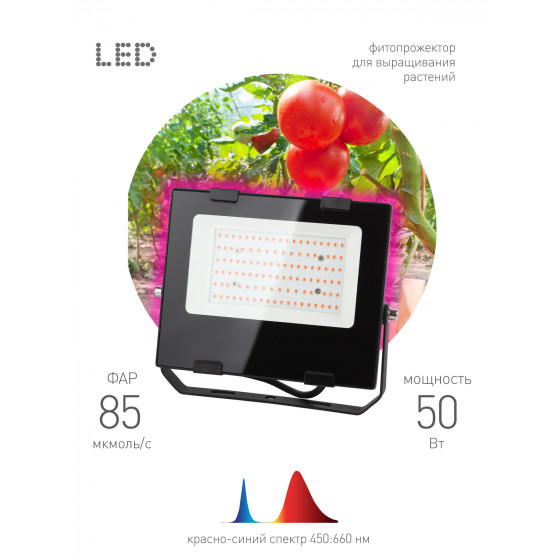 ЭРА Прожектор красно-синего спектра FITO-50W-RB-LED 3