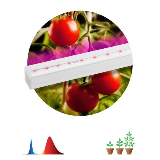 ЭРА Линейный светильник красно-синего спектра FITO-14W-Т5-N 1
