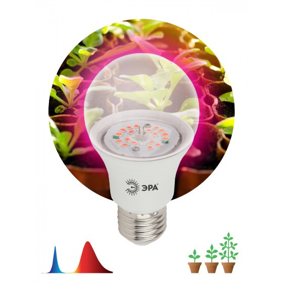 ЭРА Лампа красно-синего спектра FITO-10W-RB-E27-K 1
