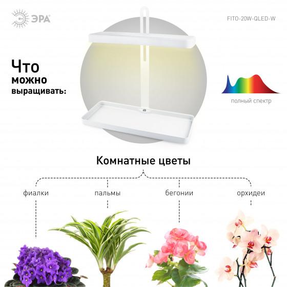 ЭРА Настольный светильник полного спектра FITO-20W-QLED-W 4