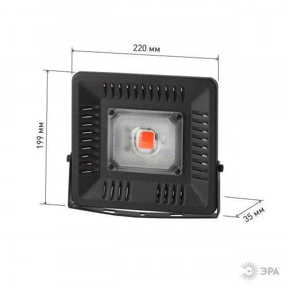 ЭРА Прожектор красно-синего спектра FITO-50W-LED BLUERED 4