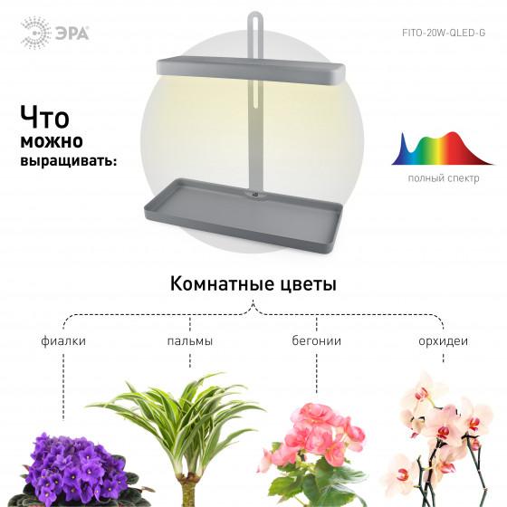 ЭРА Настольный светильник полного спектра FITO-20W-QLED-G 4