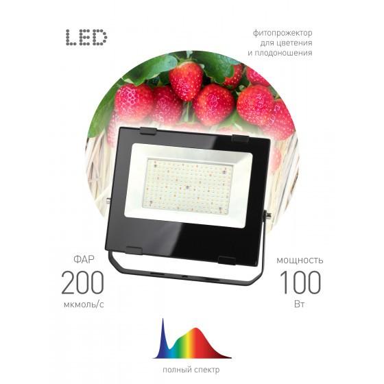 FITO-100W-Ra90-LED ЭРА ФИТО прожектор для цветения и плодоношения 3