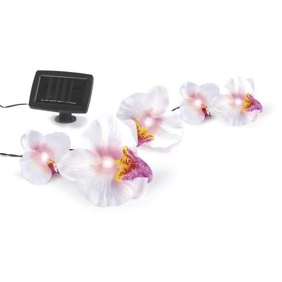 SL-PL420-FOD12 ЭРА Садовый светильник на солнечной батарее, пластик, цветной, длина гирлянды - 420 с 1