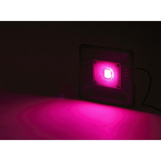 ЭРА Прожектор красно-синего спектра FITO-50W-LED BLUERED 7