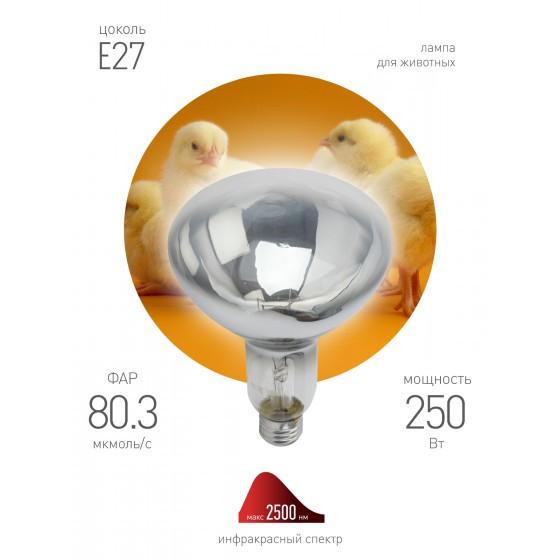ЭРА Инфракрасная лампа ИКЗ 220-250 R127 E27 3