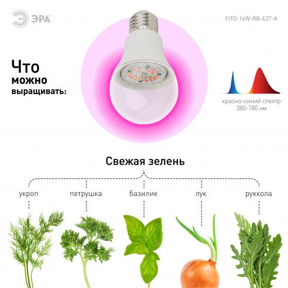 ЭРА Лампа красно-синего спектра FITO-14W-RB-E27-K 4