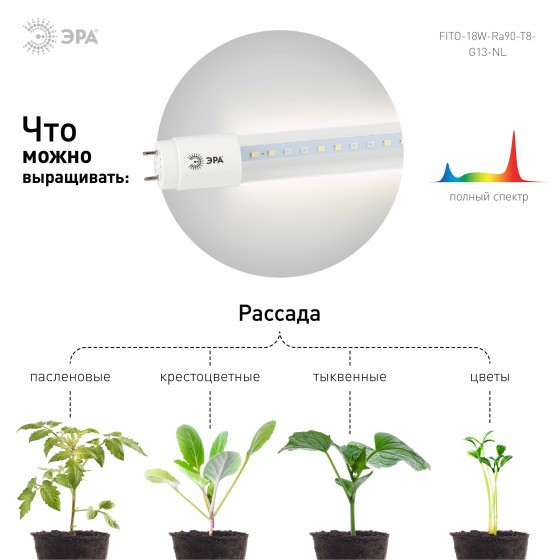 ЭРА Лампа полного спектра FITO-18W-Ra90-Т8-G13-NL 4