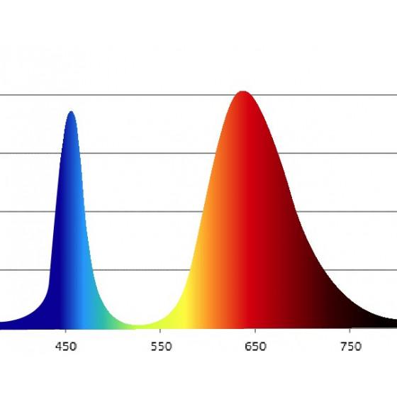 ЭРА Лампа красно-синего спектра FITO-16W-RB-E27-K 6