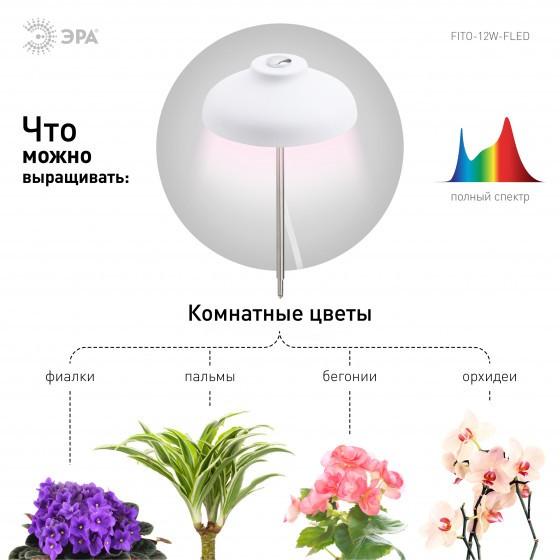 ЭРА Штыковой светильник полного спектра FITO-12W-FLED 5